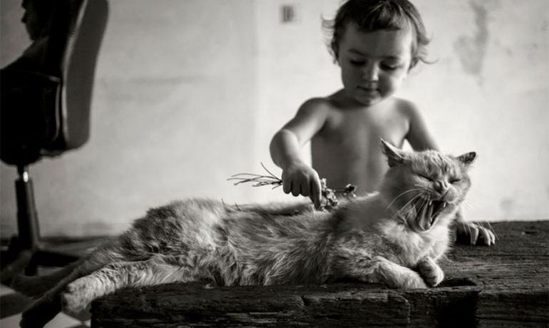 Un padre captura fotos de sus hijos y animales día a día