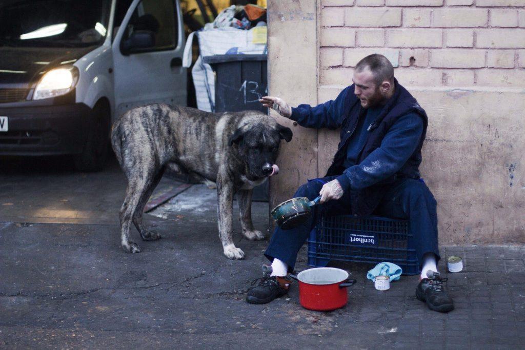 javier el chatarrero con perro