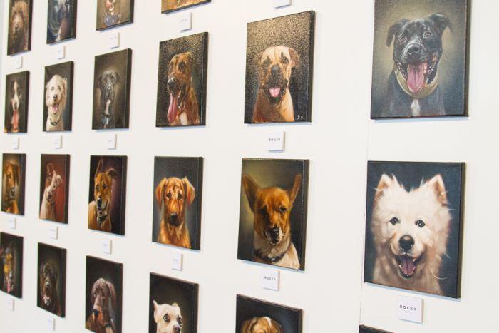 Un artista pinta 100 retratos de perros para fomentar su adopción
