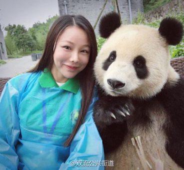 Este panda es todo un maestro de los selfies en China