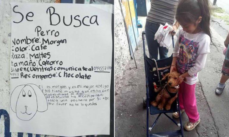 Esta niña recuperó a su perro gracias a su propio dibujo