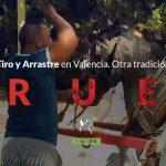 Injusticia animal en las competiciones de Tiro y Arrastre de Valencia