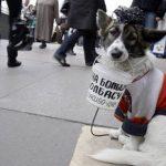 Prohibido pedir con el perro o atarlo en la calle