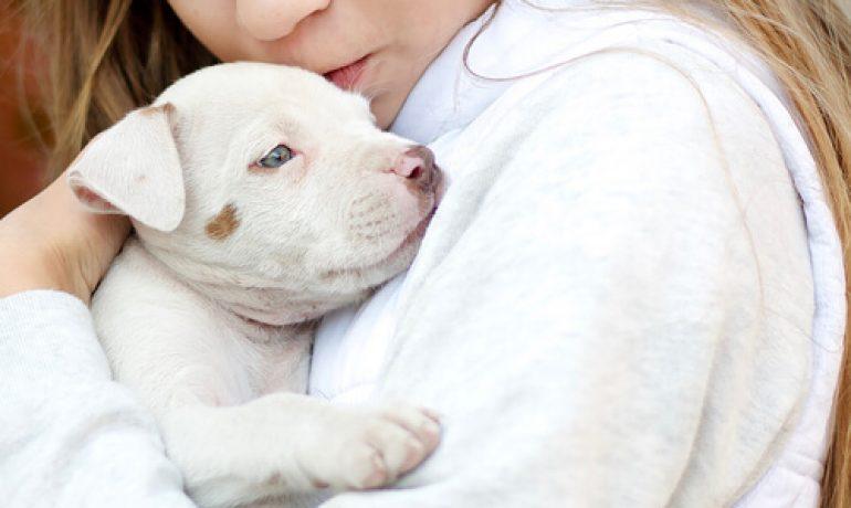 Los animales como terapia para el Trastorno del Espectro Autista
