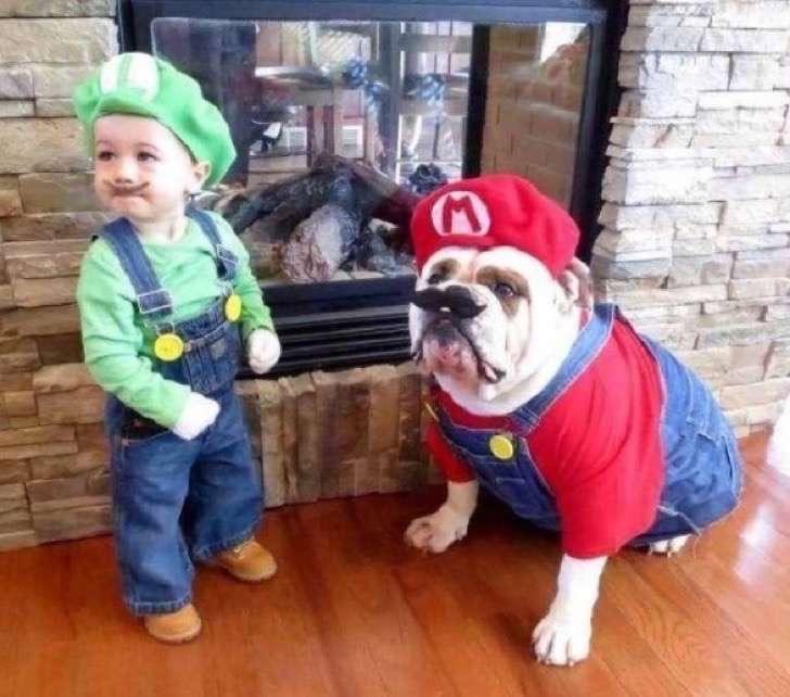 2. Mario y Luigi