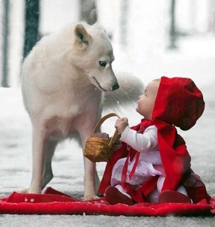 3. Caperucita Roja y el... ¿lobo?