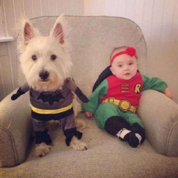 5. Batman y Robin