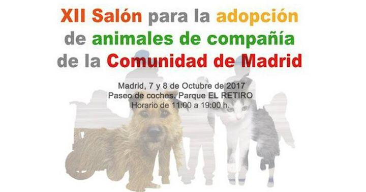 Feria de adopción de mascotas en Madrid