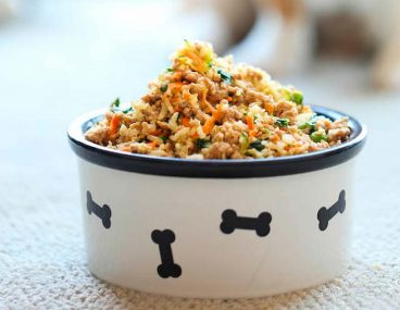 Recetas caseras fáciles de comida para perros