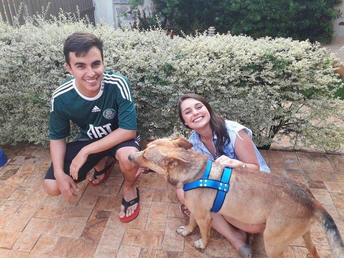 Una pareja de novios encuentra un perro en su boda