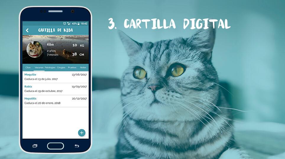 cartilla digital wakyma