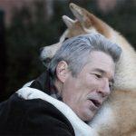 peliculas-sobre-perros-que-tienes-que-ver