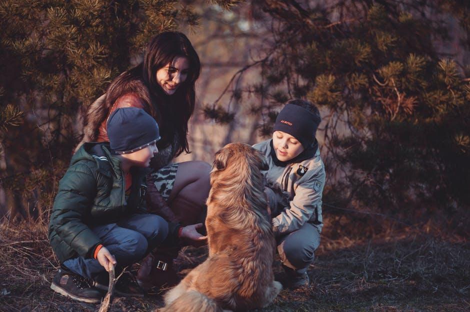 4. Socializa a tu mascota con personas