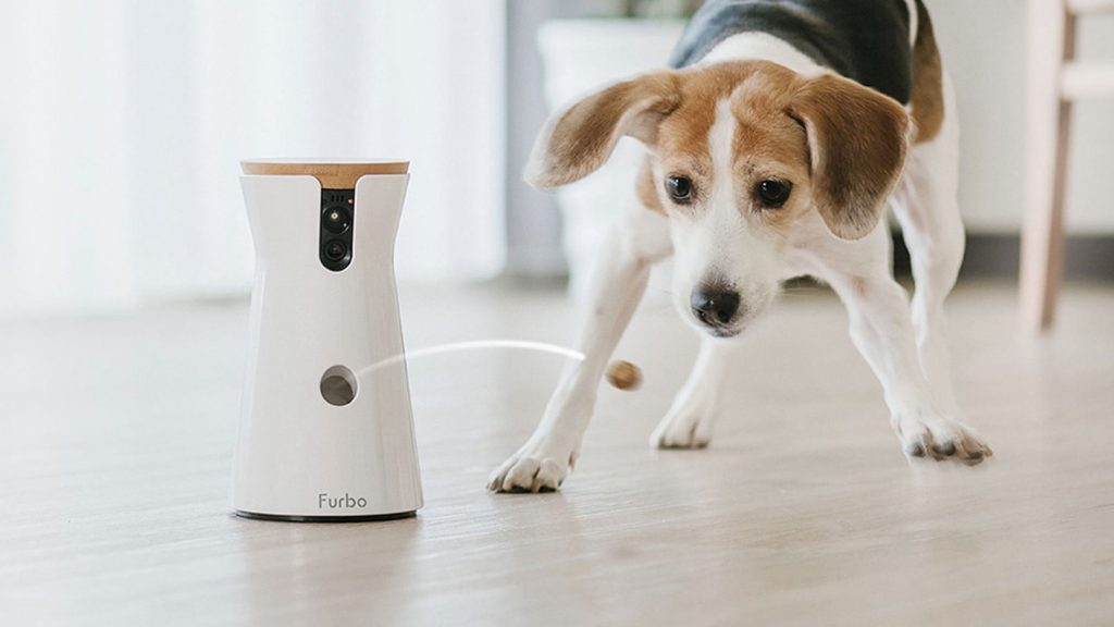 Furbo, la cámara para perros, de venta en España