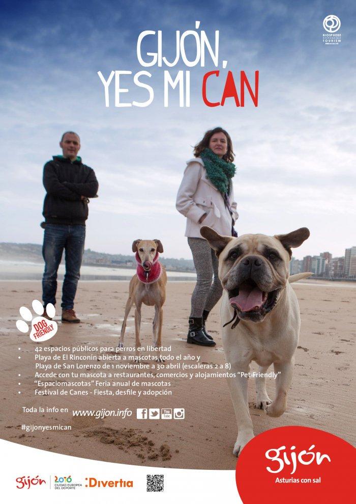 La ciudad más DogFriendly de España en 2017 es Gijón