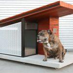 Ya puedes comprar la casa de perro más lujosa del mercado