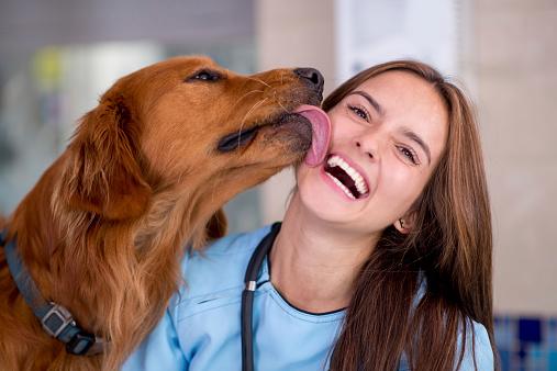 Besos de perro: ¿Qué ha estado haciendo tu peludo antes de demostrarte su cariño?