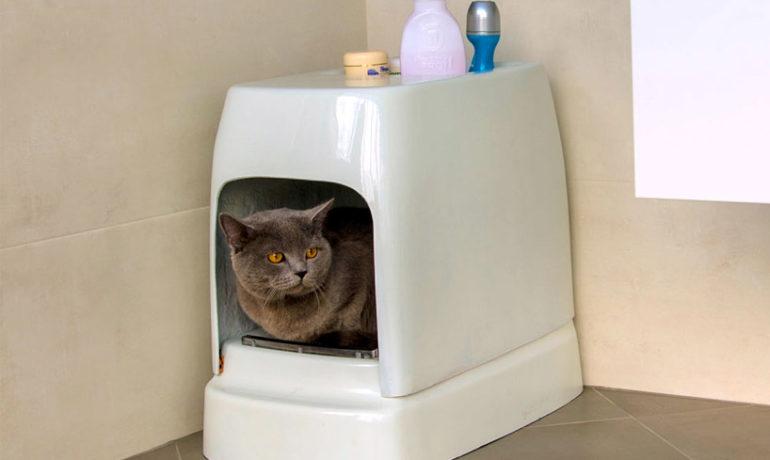 Catolet- El inodoro automático para gatos y perros pequeños