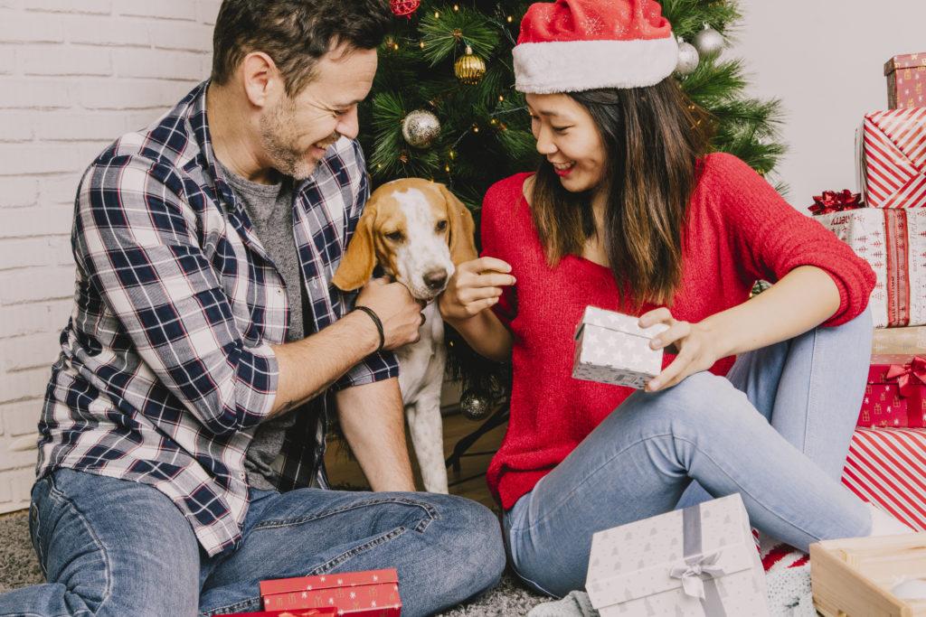 Regalos de Navidad para mascotas, la mejor opción para consentir a tu mejor amigo