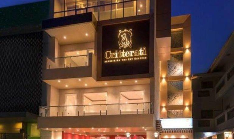 Un hotel de lujo para perros abre en la ciudad india de Gurugram