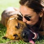 ¿Por qué tu perro a veces se comporta como humano?