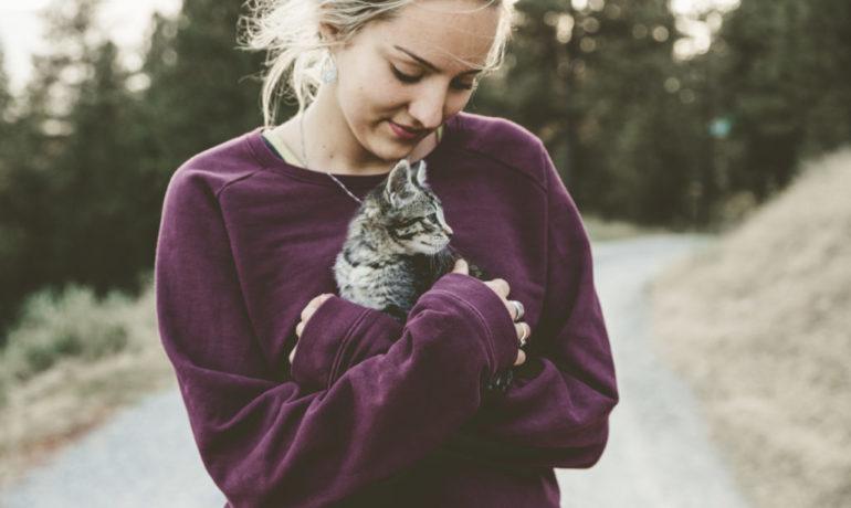 Dueños de perros vs dueños de gatos