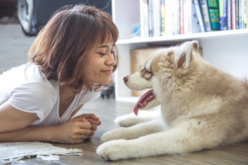 Educa sin castigos_Claves para el adiestramiento canino en positivo