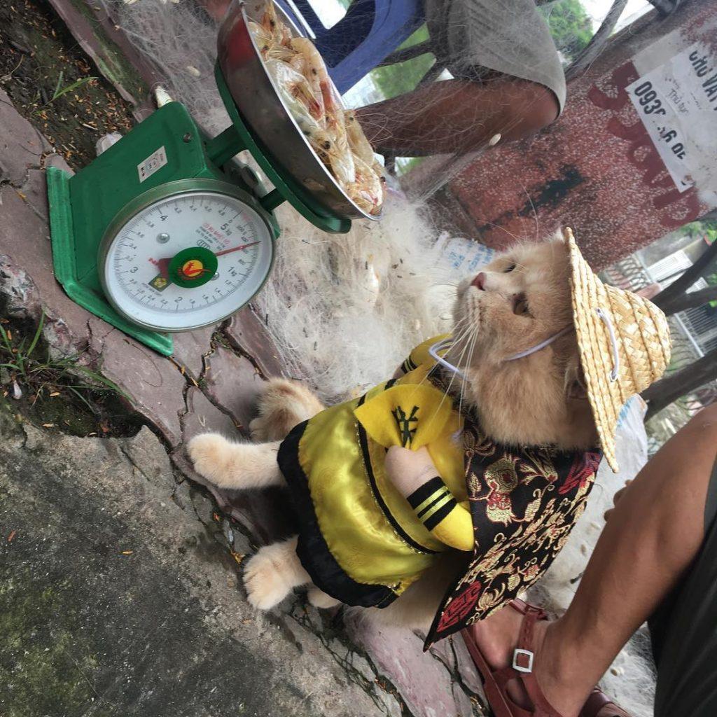 vendedor de pescado vietnam