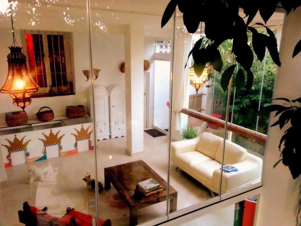 hotel canino de lujo en Marbella
