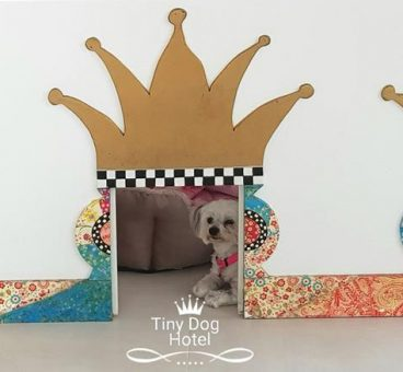 Tiny Dog Hotel hotel canino