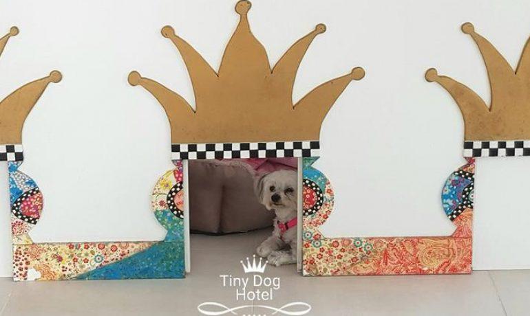 Tiny Dog Hotel hotel canino
