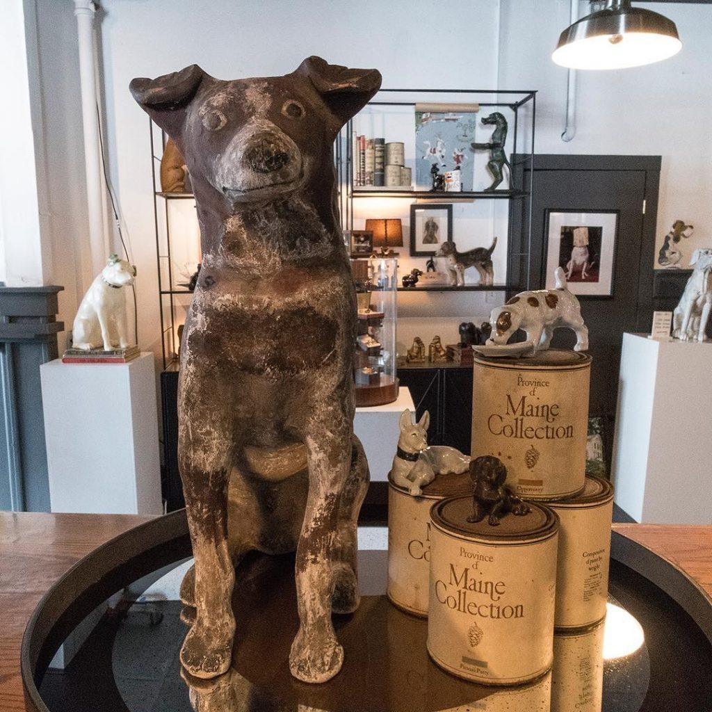 museo de perros en massacchussets