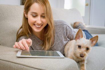 consejos-para-contratar-el-mejor-seguro-veterinario