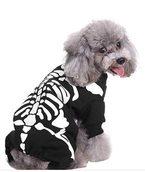 disfraces de halloween para perros esqueleto