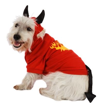 disfraces de halloween para perros diablo