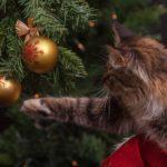 árbol navideño para gatos