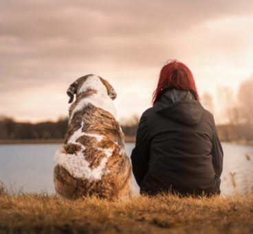 relación tóxica con tu perro