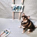 Hunter el perro pintor