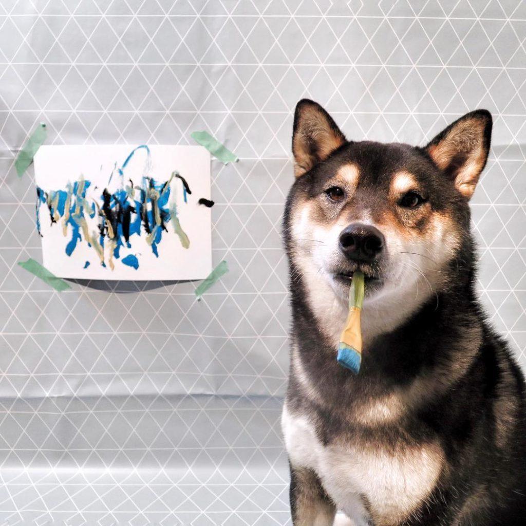 Hunter el perro que pinta
