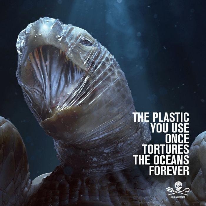 campaña plástico en el mar sea shepherd