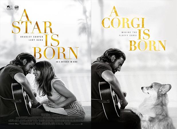 Ha-nacido-una-estrella