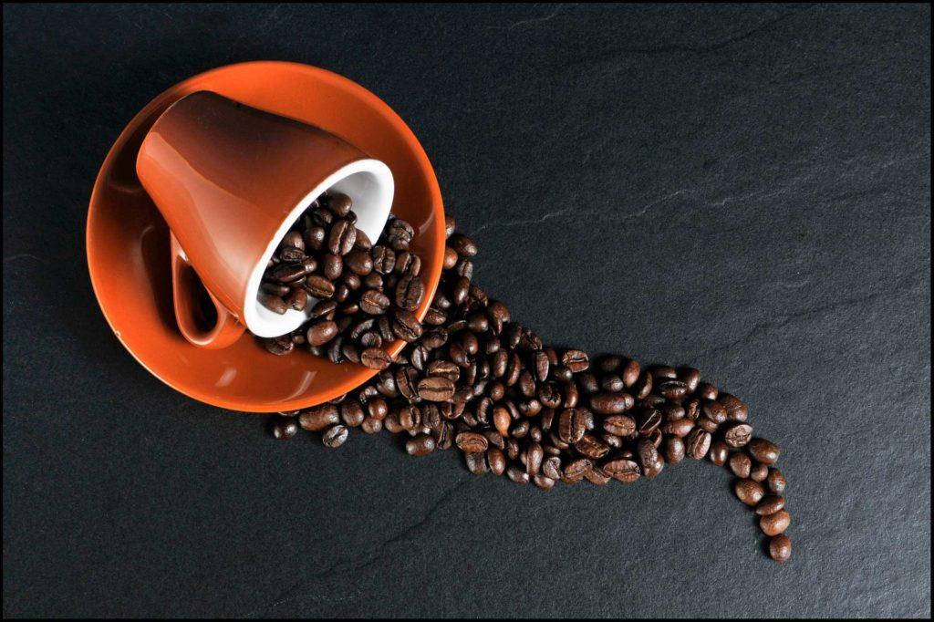 café alimentos tóxicos para los hurones