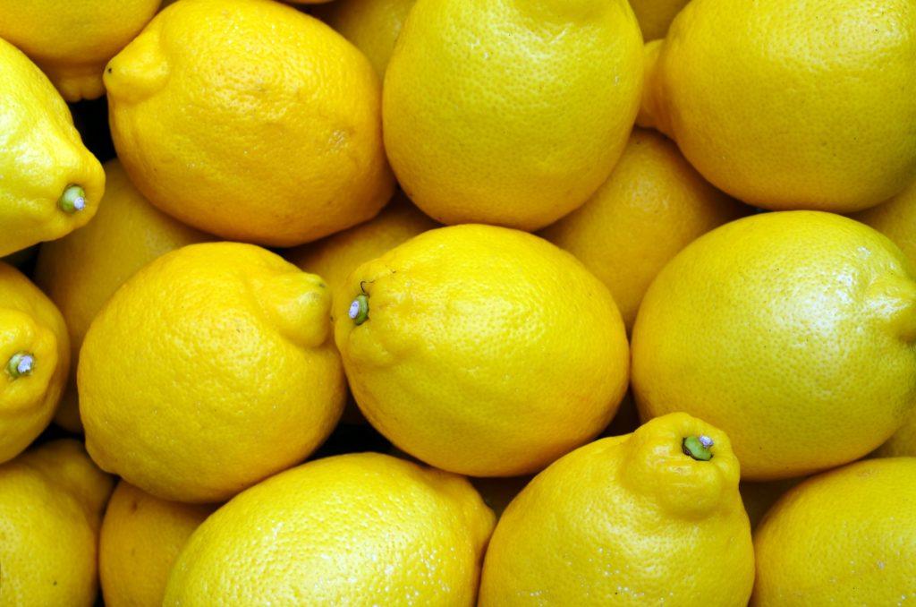 limon como remedio casero para pulgas en perros
