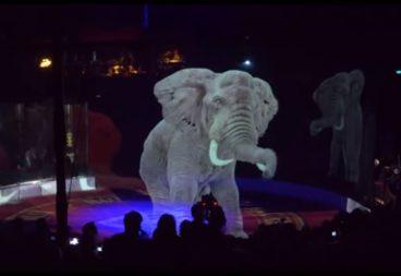 Circo con hologramas 3d de animales