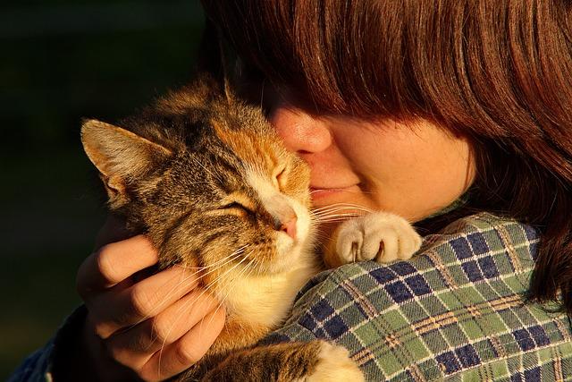 acariciar al perro o gato reduce el estrés