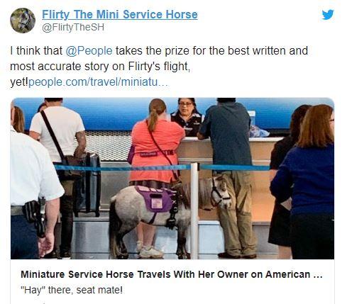 Flirty el caballo que viaja en avion