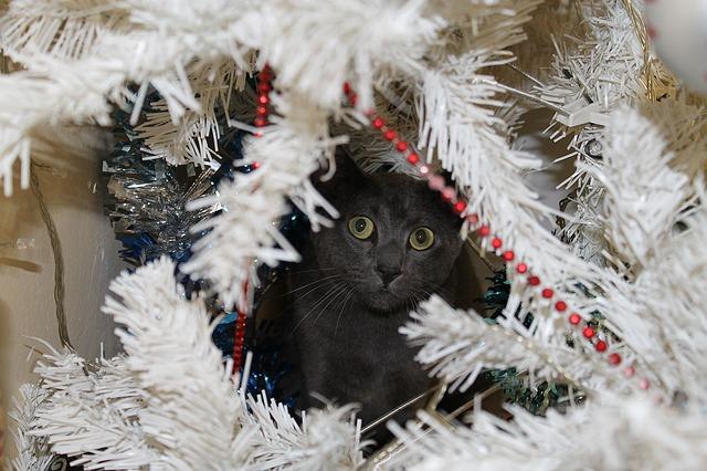 evitar que el gato destroce el árbol de navidad