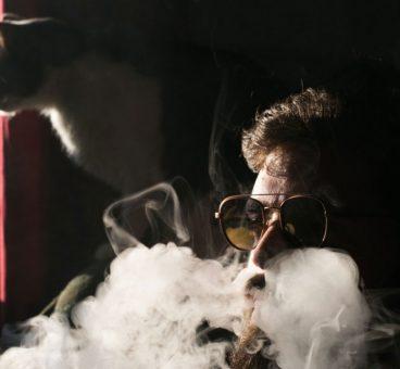 El humo del cigarro afecta a las mascotas