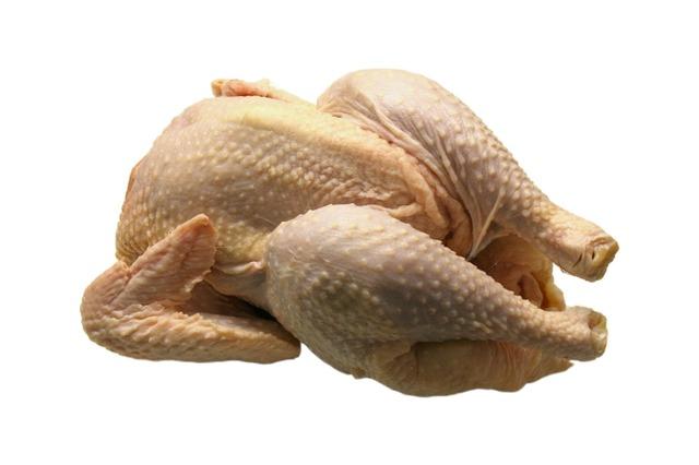 Pueden comer pollo crudo los perros o no