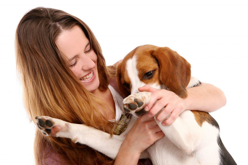errores que cometemos con el perro al irnos y al volver